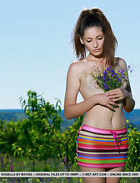 Colour featuring Rosella by Matiss